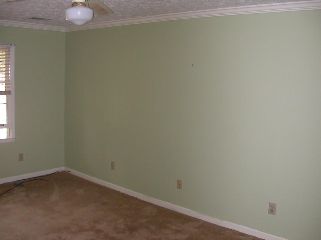 Bedroom before - Light green master bedroom ...